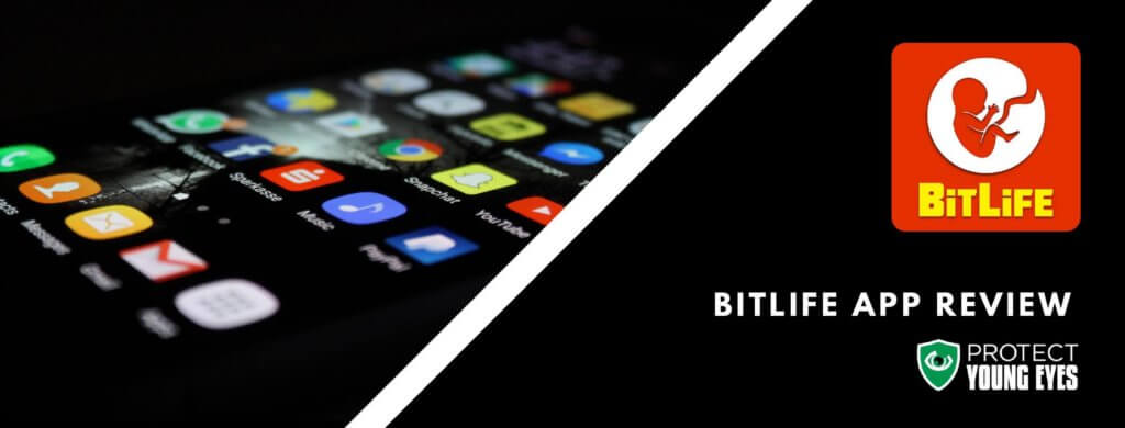 BitLive Life Simulator App Review