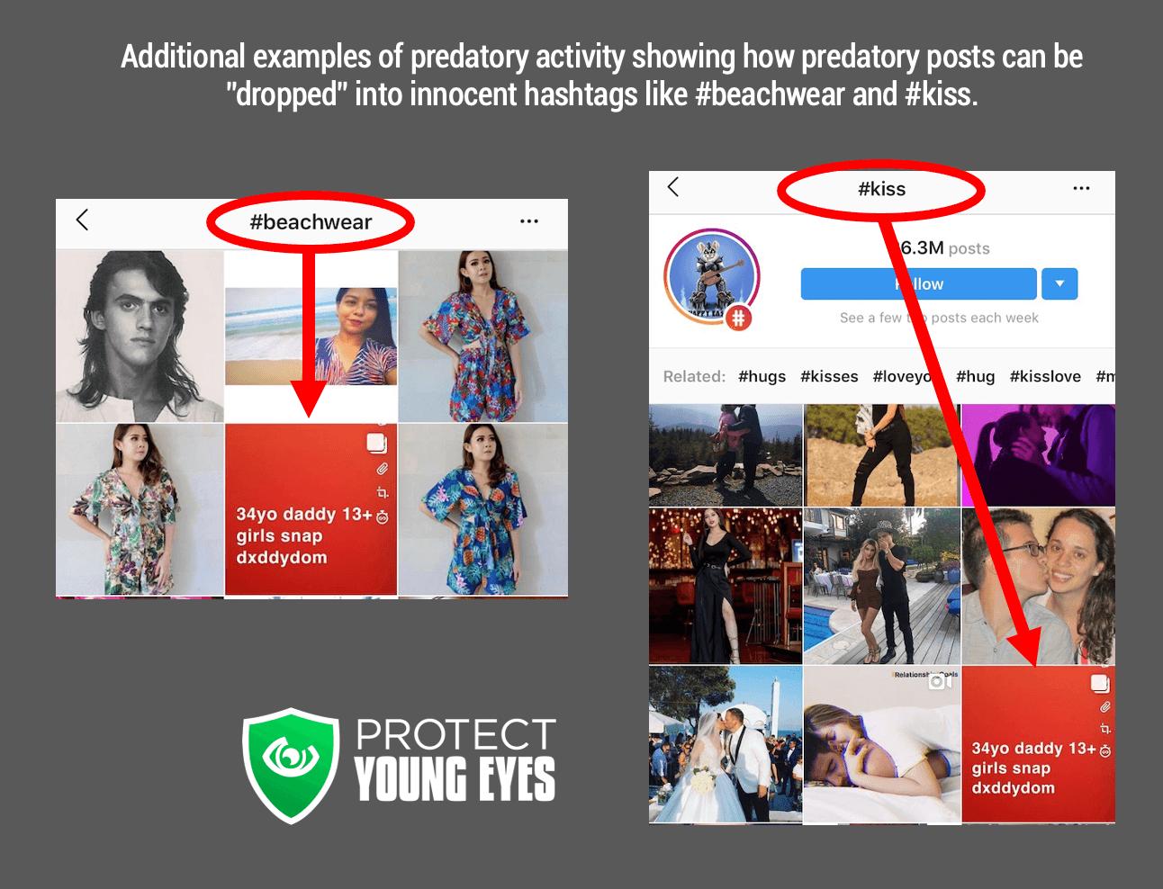 Instagram and Predators - PYE 3