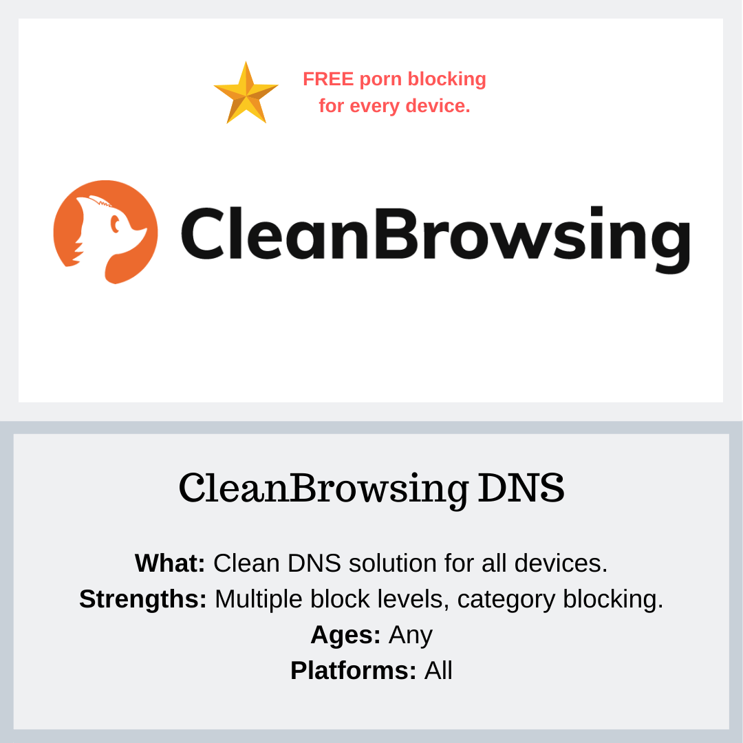 Clean Browsing Resources - PYE