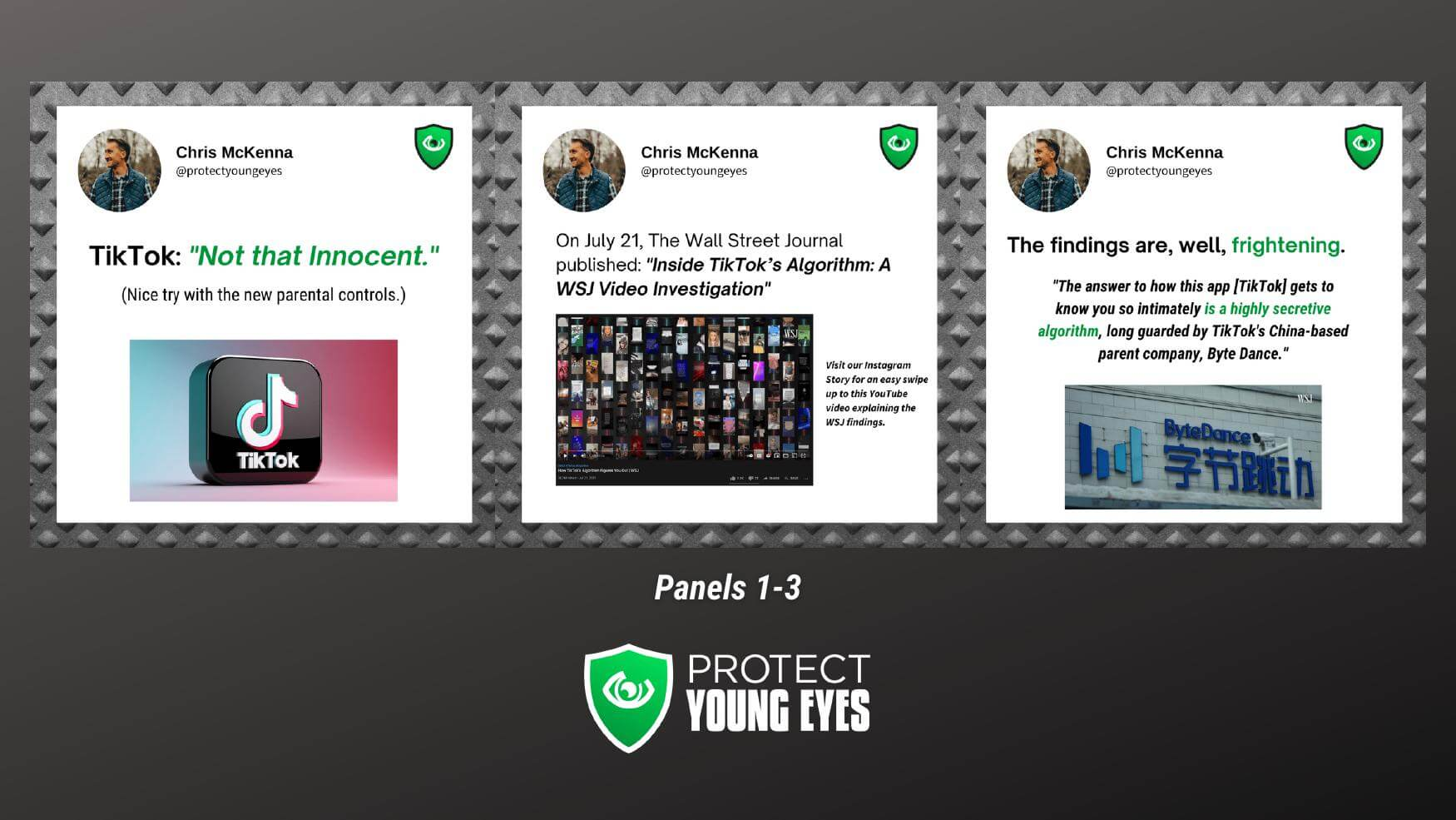 TikTok Algorithm Panels 1-3 from PYE Instagram